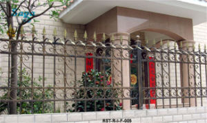 Iron Fence for Home Decoration Saga Fence