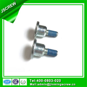 Special Fasteners/Custom Fasteners/Screws and Fasteners pictures & photos