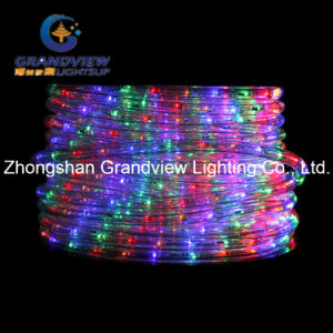 Animated 100cm LED Clear ′merry Christmas′ Motif Rope Lights pictures & photos