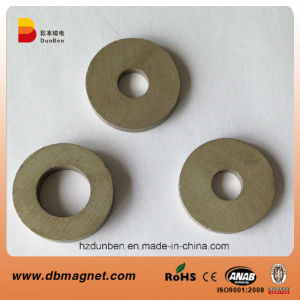 Ring Sintered Permanent SmCo Magnet pictures & photos
