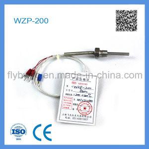 Wzp-200 PT100 Platinum Resistance pictures & photos