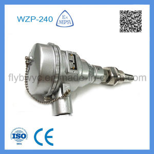 Wzp-240 Explosion-Proof Thermocouple pictures & photos