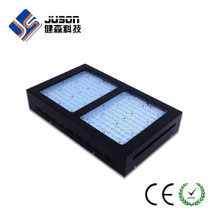 Cheap Veg and Bloom 600W Horticultural LED Grow Lights for Sale pictures & photos