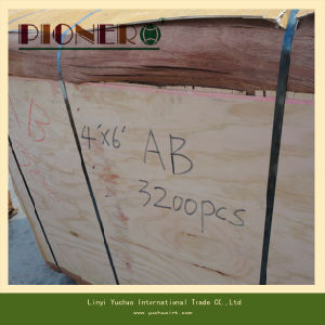 4*8′ Size Veneer Plb Poplar for India Market pictures & photos