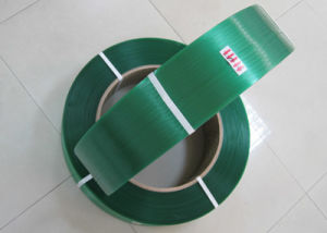 Green Pet Strap Packing Band pictures & photos