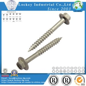 Stainless Steel Screw Hex Head Wood Screw Lag Screw Coach Screw pictures & photos