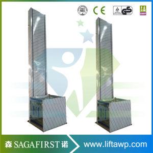 2.5m Hydraulic Vertical Domestic Disable Lift Platform pictures & photos