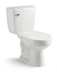 Washdown P-Trap Two Piece Toilet for Russian Market pictures & photos