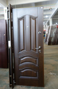 Matt Finish High Quality Steel Door pictures & photos
