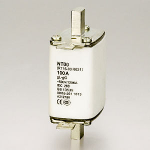 Low Voltage H. R. C. Fuse Link Nh0 Nh1 Nh2 Nh3 pictures & photos