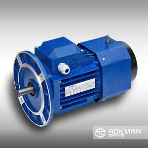 High-Quality AC Motor with Brake pictures & photos