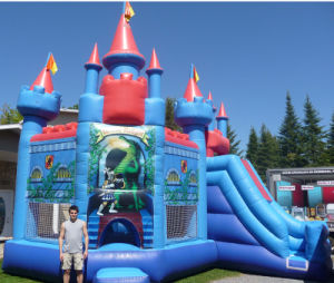 2016 New Arrival Inflatable Bouncy Castle with Slide pictures & photos