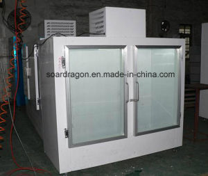 Indoor Bagged Ice Display Freezer with Defrost Glass Doors (DC-650) pictures & photos
