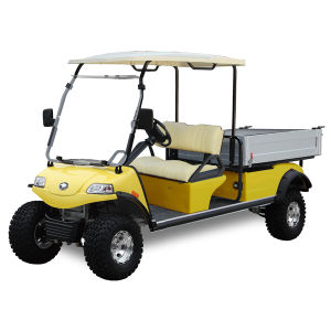 Golf Cart with Cargo Box Del3022gh pictures & photos