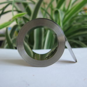 Power Spring for Roller Blinds/Warning Tape Winder pictures & photos