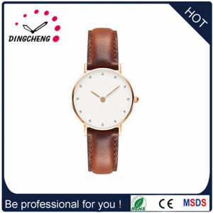 Hot Selling New Dw Style Quartz Fashion Lady Watch pictures & photos