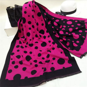 High Quality New Style Lady Long Scarf Printed Scarf Wholesale pictures & photos