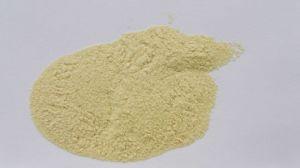 Garlic Powder, Dehydrated Good Quality Garlic pictures & photos