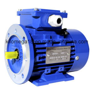 Industry Electric Motor for Exporting pictures & photos