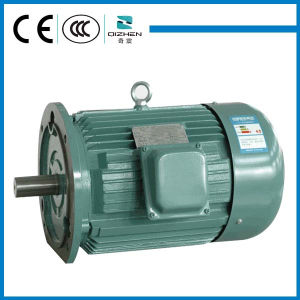 Y Series Three-Phase Induction Motor pictures & photos