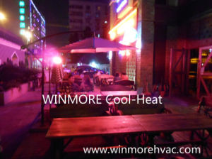 Pubs/Bars Infrared Heater with Remote Control Floor Stand/Wall Mounted Installation pictures & photos