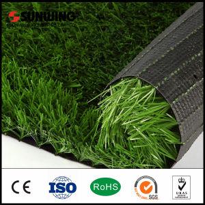 China Cheap Grass PE Artificial Football Grass pictures & photos