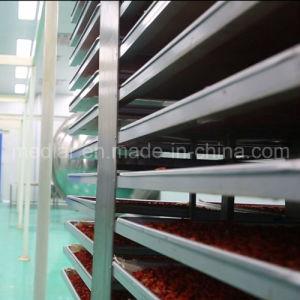 Medlar Lbp Effective Food Red Dried Goji Berry pictures & photos