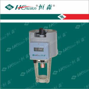 Df/Q-Xe (XG) Series Actuators pictures & photos