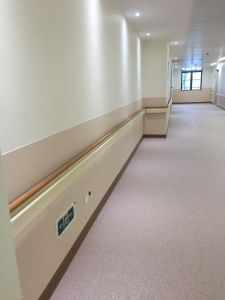 Hospital Handrail as Medical Hand Rails with PVC Material pictures & photos