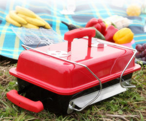 Homemade Folding Garden Camping Barbecue Grill BBQ for Outdoor pictures & photos
