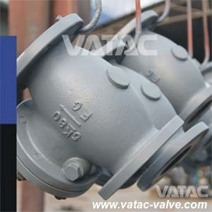 Bonnet Bolted Cast Steel RF Flange Marine Check Valve pictures & photos