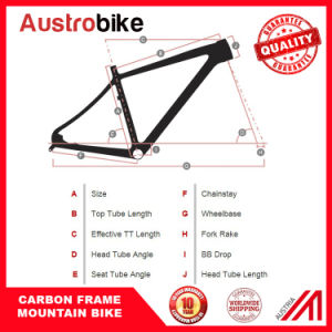 26 Er MTB Full Carbon Frame