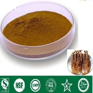 Red Ginseng Extract Ginseng Saponins 10% OEM