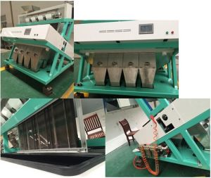 Hons+ Best Selling Leading-Edge Technology Grain Color Sorter at Cheapest Price pictures & photos