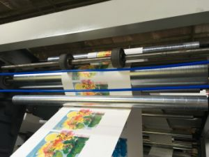 4 Colors Plastic PE PP OPP Film Roll Flexographic Printing Machine (NX4600) pictures & photos