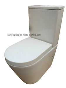 Two Piece Ceramic Toilet Washdown Toilet Water Closet Wc 1088d Rimless