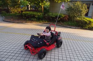 Competitive Price New Style Small 80cc Kids Go Kart pictures & photos