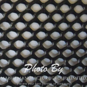 30m X 2m Plastic Extruded Wire Netting pictures & photos