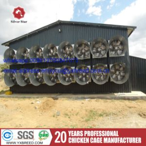 Chicken Cage of Poultry Equipment for Sale in Zambia pictures & photos