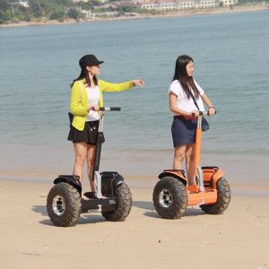 Wind Rover V5+ off Road Electric Car Two Wheel Motor Scooter pictures & photos