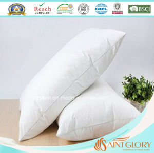 Cheap Goose Down Pillows pictures & photos