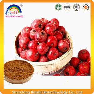 Crataegus Berries Extract for Heath Food Addictive pictures & photos
