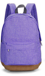 Hot Sale Candy Color Business Computer Sports Laptop Backpack Bag Handbagsyf-Bb16145 pictures & photos