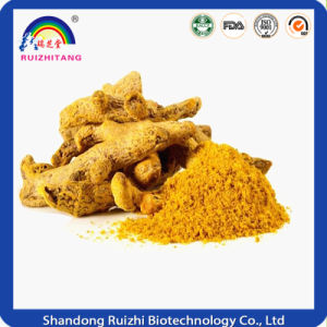 Organic Turmeric Extract Curcumin for Food Coloring pictures & photos