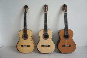 BV/SGS Certificate Supplier--Aiersi Smallman Guitars pictures & photos