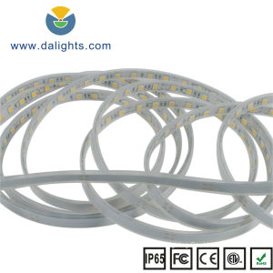 DC 24V S5050 15W LED LED Strip Light pictures & photos