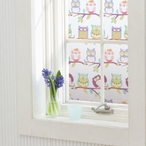 Static Cling Window Film Graphic Printed-P132 pictures & photos