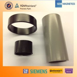 14 Years Experience ISO/Ts 16949 Certificated Solvent Resistance PPS Bonded NdFeB Magnet pictures & photos