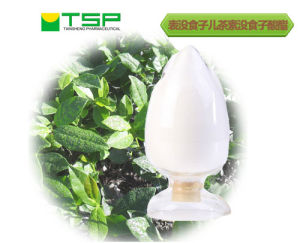 Natural Food Additives Green Tea Extract EGCG 70% with GMP Certification pictures & photos