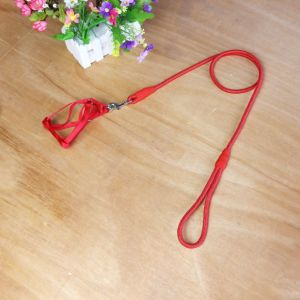 Cheap Nylon Pet Dog Leash with Harness pictures & photos